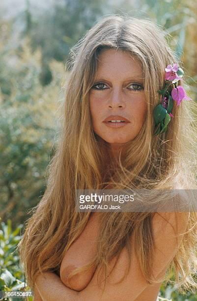 Brigitte Bardot Still Beautiful At 40 SaintTropez Septembre 1974 Brigitte BARDOT pose seins nus à la Madrague Elle va fêter ses 40 ans le 28 septembre