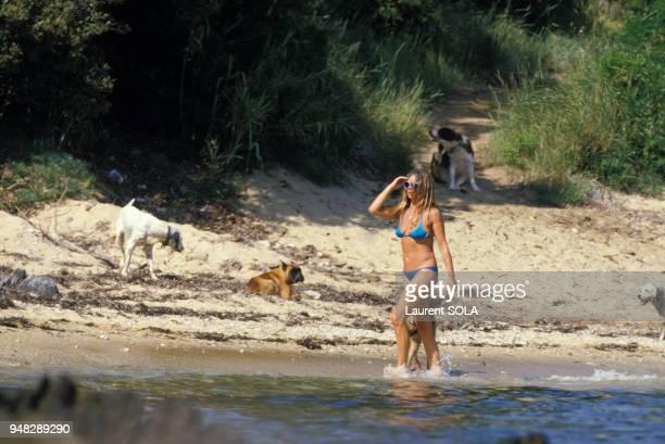Brigitte Bardot sur la plage de sa villa La Madrague avec ses chiens en juin 1984 à SaintTropez France