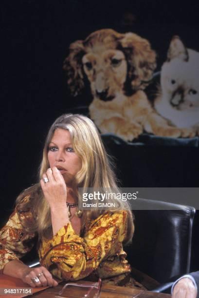 Brigitte Bardot sur le plateau de l'émission de télévison 'Les Dossiers de l'écran' consacrée à la vivisection le 7 avril 1981 à Paris France