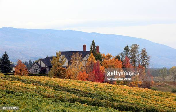 Brilliant Fall Scenic Of Home,Vineyard And Trees