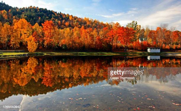 brilliant new england foliage along a small pond in new hampshire white mountains national forest, usa - new hampshire stock pictures, royalty-free photos & images