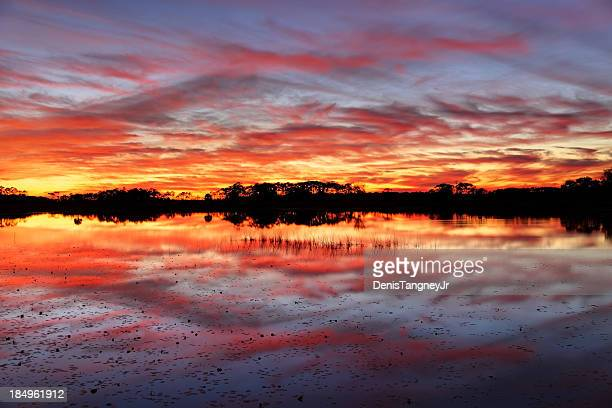 brilliant sunset - tallahassee stock pictures, royalty-free photos & images