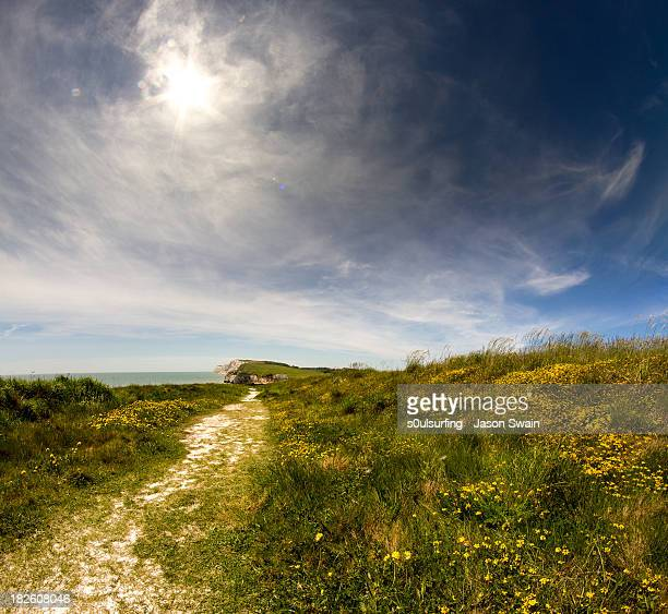 bring me sunshine - chalk downs - s0ulsurfing stock pictures, royalty-free photos & images