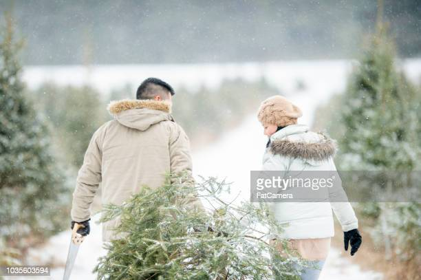bringing a christmas tree - christmas tree farm stock pictures, royalty-free photos & images
