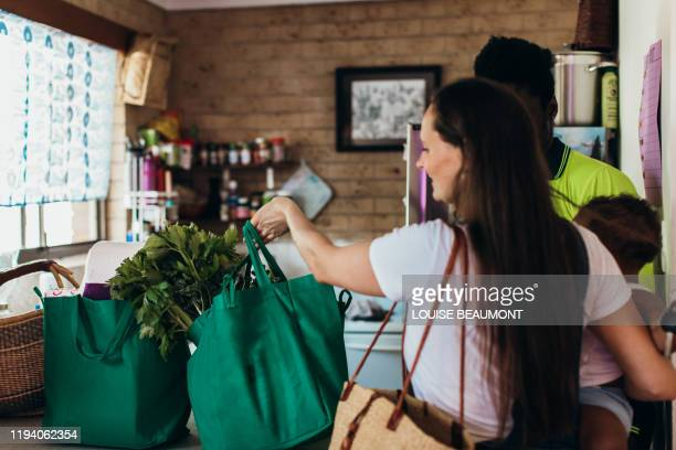 bringing in the groceries - offloading stock pictures, royalty-free photos & images