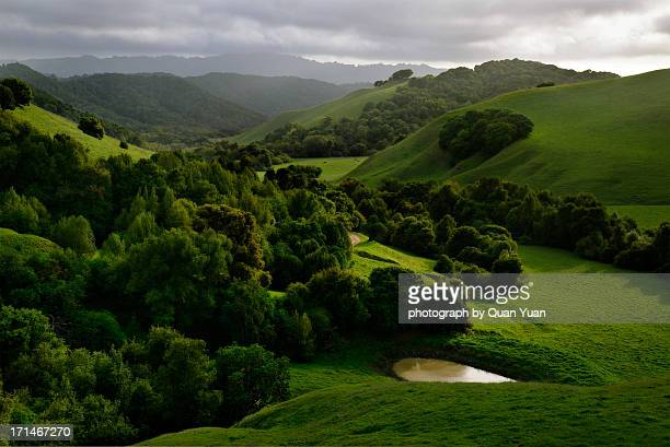 briones hills - quan yuan stock pictures, royalty-free photos & images