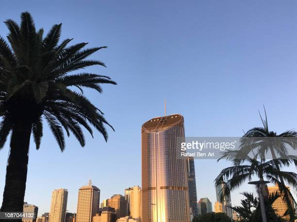 brisbane skyline - rafael ben ari stock pictures, royalty-free photos & images