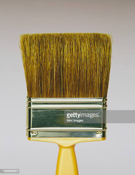 A bristle paintbrush with a yellow handle.