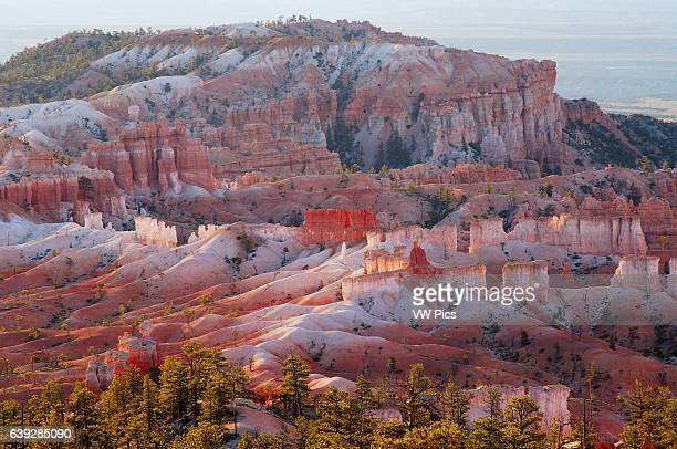 Bristlecone Point at Sunrise from Sunrise Point, Bryce Canyon National Park, Utah.