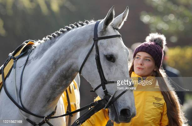 Bristol De Mai is led out to compete in the Gold Cup during day four of the Cheltenham National Hunt Racing Festival at Cheltenham Racecourse on...