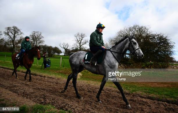 Bristol De Mai makes its way down the gallops during a Nigel TwistonDavies Stable Visit at Grange Hill Farm on March 2 2017 in Naunton England
