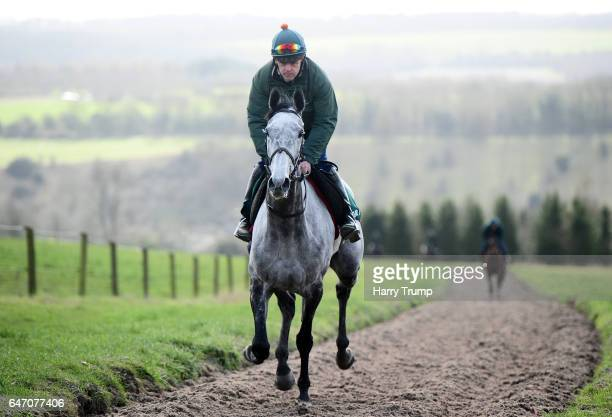 Bristol De Mai makes its way up the gallops during a Nigel TwistonDavies Stable Visit at Grange Hill Farm on March 2 2017 in Naunton England