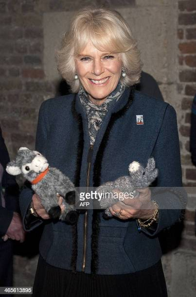 Britain's Camilla Duchess of Cornwall holds soft toys as she views 'The Brooke through a lens' exhibition to mark the 80th anniversary of the animal...