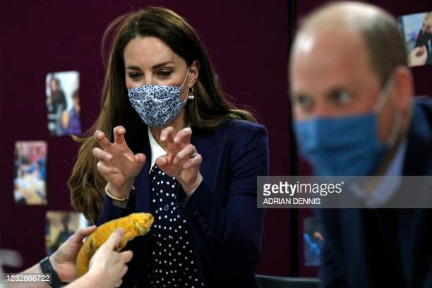 Britain's Catherine, Duchess of Cambridge, gestures at a chameleon as she joins a group of local school children from Loxdale Primary School during a...