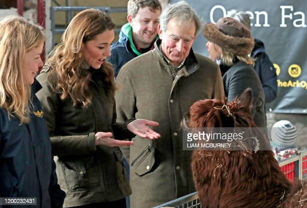Britain's Catherine Duchess of Cambridge reacts as she strokes an alpaca during her visit to Ark Open Farm near Belfast on February 12 as part of her...
