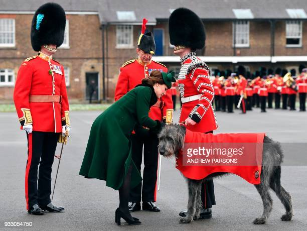 Britain's Catherine Duchess of Cambridge with a dog as she attends the St Patrick's Day Parade with the 1st Battalion Irish Guards at Cavalry...