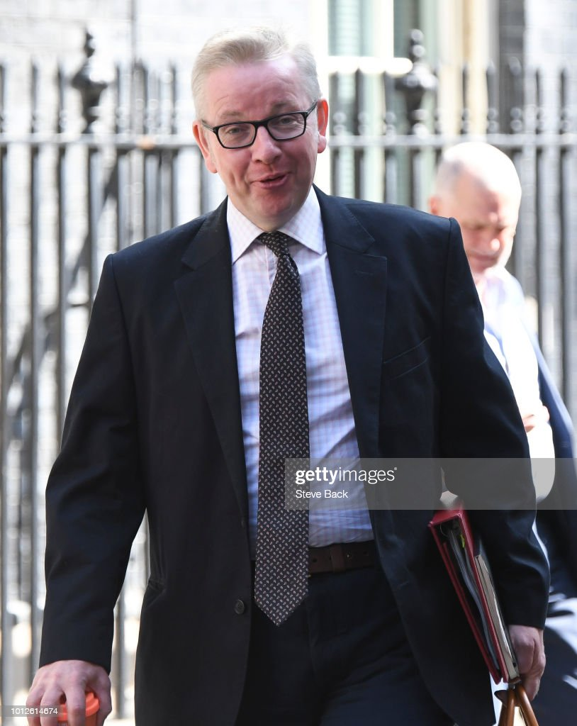 Britain's Environment, Food and Rural Affairs Secretary Michael Gove... : News Photo