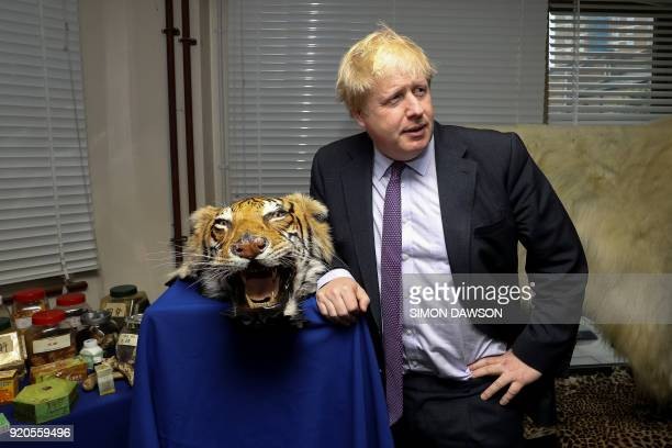 Britain's Foreign Secretary Boris Johnson stands next to a seized tiger skin rug as he visits a Metropolitan Police wildlife crime unit facility in...