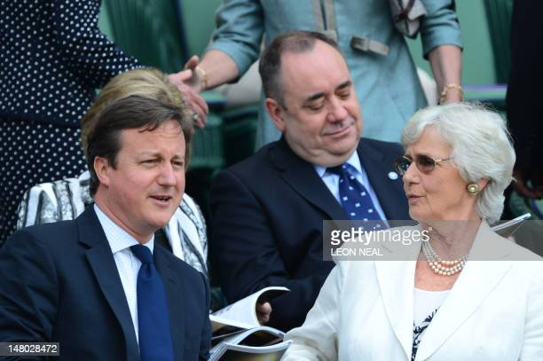 Britain's Prime Minister David Cameron and his mother Mary Cameron watch from the Royal Box on Centre Court before the men's singles final match...