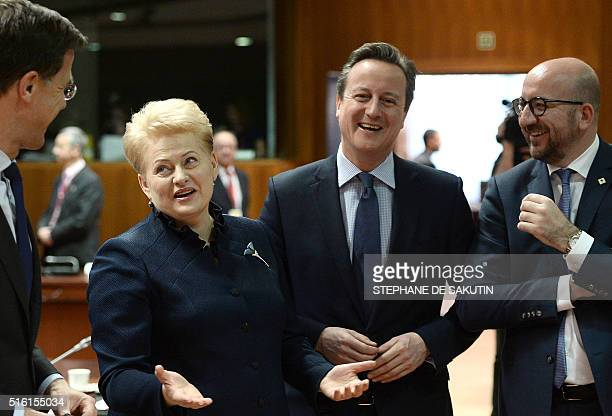 Britain's Prime Minister David Cameron speaks with Lithuania's President Dalia Grybauskaite during an EU summit meeting on March 17 2016 at the...