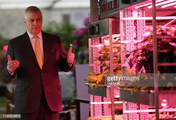 Britain's Prince Andrew Duke of York looks at vegetables growing under artificial light on a Grow Stack vertical farm in the IKEA Gardening will save...