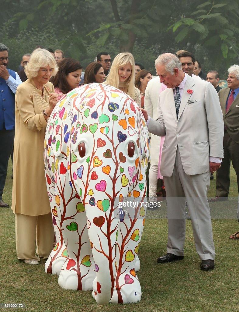 INDIA-BRITAIN-ROYALS-DIPLOMACY-ELEPHANTS : News Photo