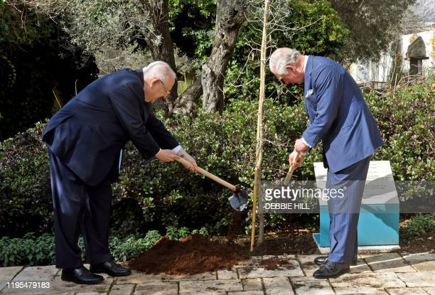 Britain's Prince Charles and Israeli President Reuven Rivlin plant a tree outside the presidential residence in Jerusalem ahead of a meeting on the...