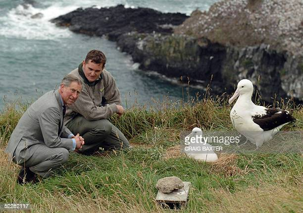 Britain's Prince Charles and the head ranger at the Royal Albatross Centre Lyndon Perriman get a close up look at a Royal Albatross and its chick...