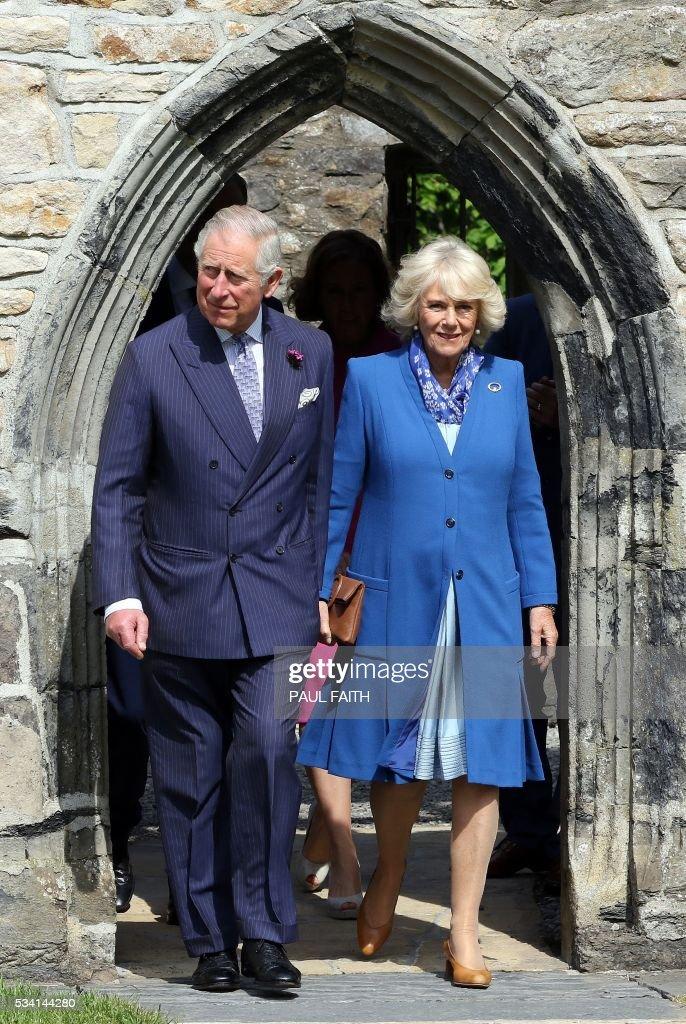 IRELAND-BRITAIN-ROYAL : News Photo