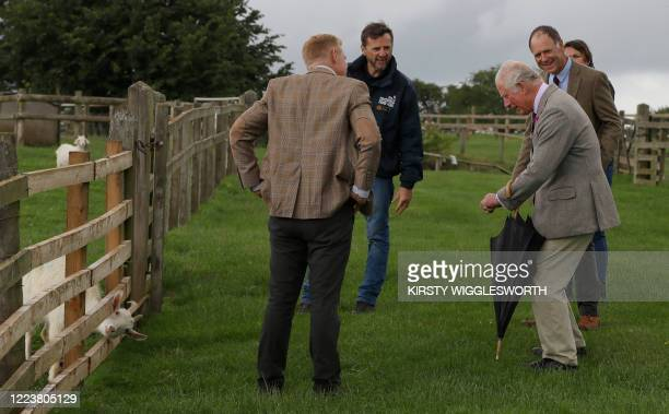 Britain's Prince Charles Prince of Wales reacts as a goat briefly gets its head stuck through a fence during his visit to Cotswold Farm Park near...