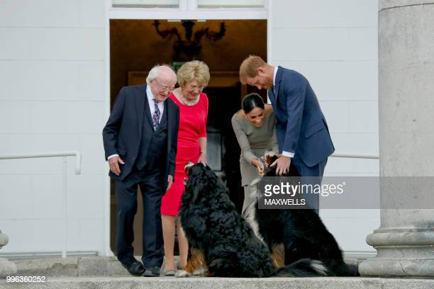 Britain's Prince Harry and wife Meghan Duke and Duchess of Sussex greet the dogs of Ireland's President Michael Higgins and wife Sabina on arrival at...