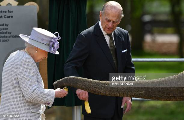 Britain's Prince Philip Duke of Edinburgh watches as his wife Britain's Queen Elizabeth II feeds an elephant named 'Donna' after opening the new...
