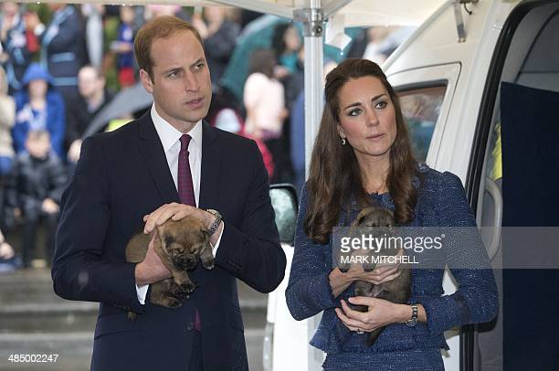 Britain's Prince William and his wife Catherine the Duchess of Cambridge hold puppies during their visit to the Royal New Zealand Police College in...