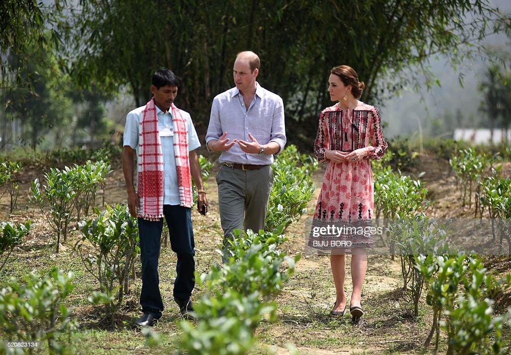 INDIA-ROYALS : News Photo