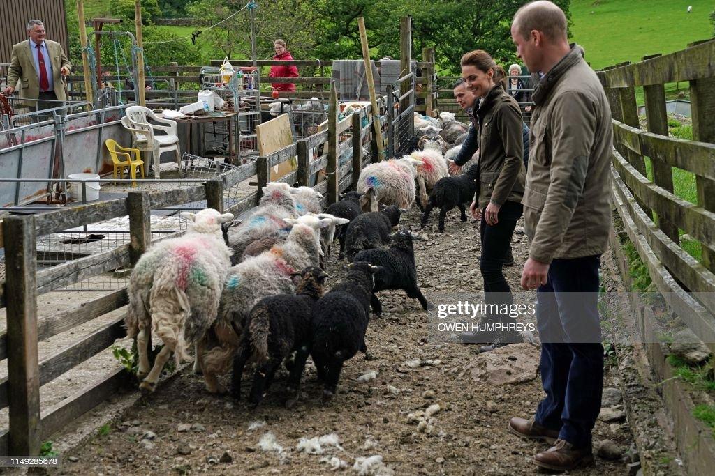 BRITAIN-ROYALS : ニュース写真