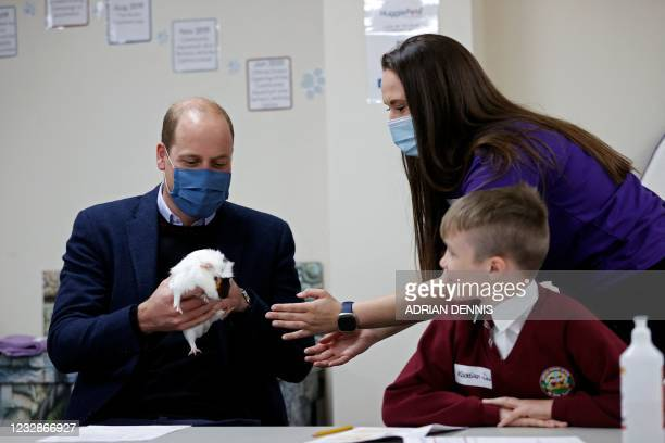 Britain's Prince William, Duke of Cambridge, handles Gus the Guinea Pig as he joins a group of local school children from Loxdale Primary School...