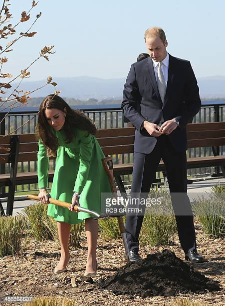 Britain's Prince William watches as his wife Catherine the Duchess of Cambridge shovels dirt while planting at the National Arboretum in Canberra on...