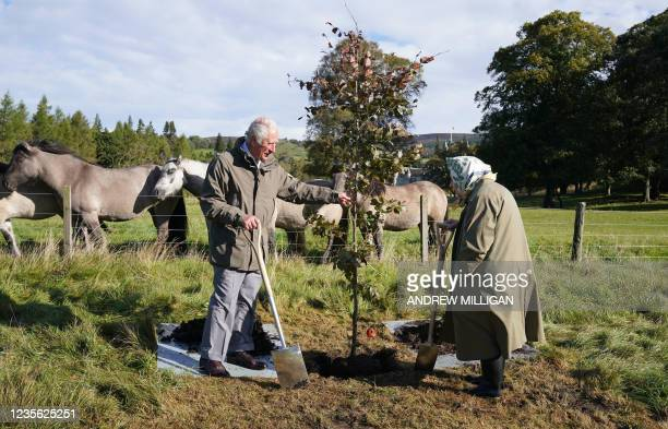 Britain's Queen Elizabeth II and Britain's Prince Charles, Prince of Wales plant a tree to mark the start of the official planting season for the...