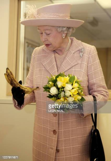 Britain's Queen Elizabeth II holds a bunch of bananas that were presented to her by Elizabeth Hyde during a visit to the Queen Elizabeth Hospital...