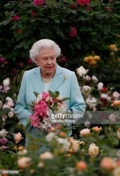 Britain's Queen Elizabeth II is pictured as she visits the David Austin rose garden at the 2016 Chelsea Flower Show in central London on May 23 2016...
