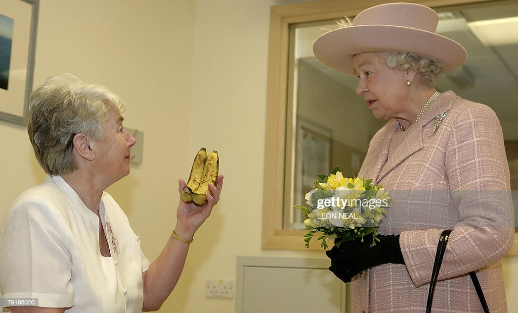 Britain's Queen Elizabeth II (R) is presented with a bunch of bananas by Elizabeth Hyde during a visit to the Queen Elizabeth Hospital, King's Lynn in Norfolk, eastern England, 24 January 2008. Elizabeth Hyde was given two bananas by the Queen Mother during a royal visit to a hospital that she was staying at in 1943, and decided to return the favour during the Queen's visit to open a new radiology department.