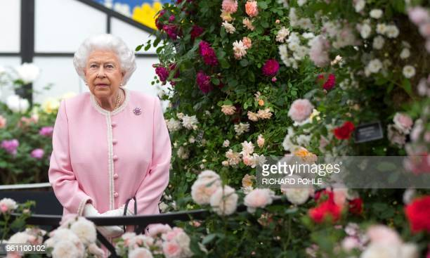 TOPSHOT Britain's Queen Elizabeth II looks at a display of roses on the Peter Beale stand as she visits the 2018 Chelsea Flower Show in London on May...