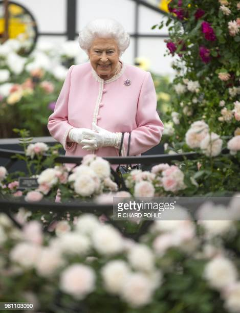 Britain's Queen Elizabeth II looks at a display of roses on the Peter Beale stand as she visits the 2018 Chelsea Flower Show in London on May 21 2018...
