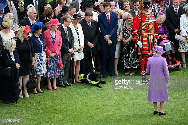 Britain's Queen Elizabeth II makes a comment about a guide dog at the first garden party of the season in the grounds of Buckingham Palace in central...