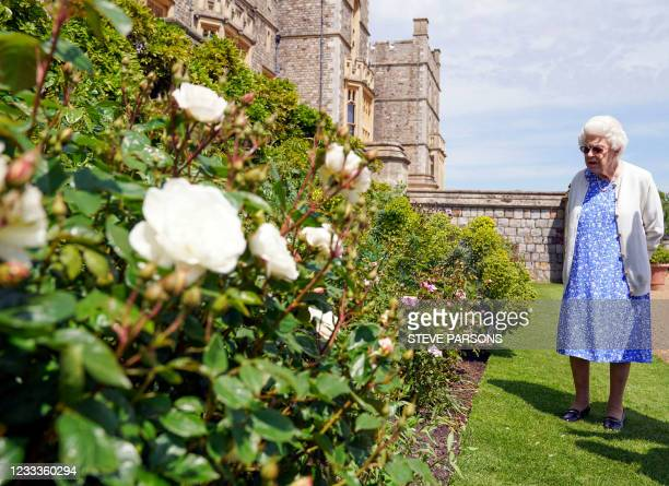 Britain's Queen Elizabeth II views a flower bed in the grounds of Windsor Castle, after she was presented with a Duke of Edinburgh rose, named in...