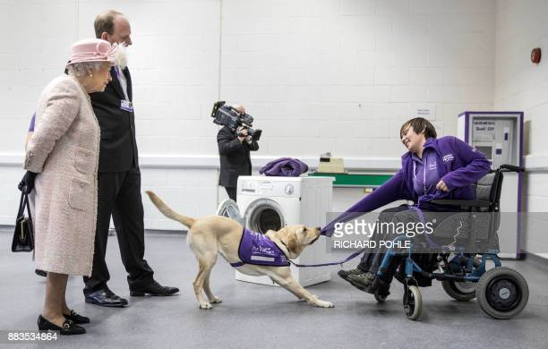 Britain's Queen Elizabeth II watches as 'Hettie' the Labrador dog demonstrates how she can help to undress a disabled person as she tours the...