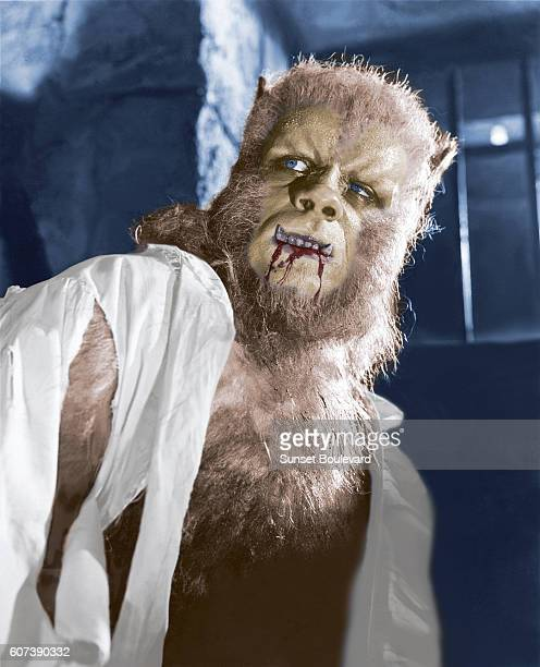 British actor Oliver Reed on the set of The Curse of the Werewolf based on the novel by Guy Endore and directed by Terence Fisher