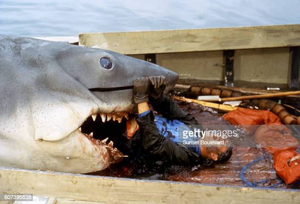 British actor Robert Shaw on the set of Jaws directed by Steven Spielberg