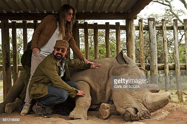 British actress Liz Hurley and Russian entrepreneur and patron of the Giants Club Evgeny Lebedev pose next to the last male northern white rhino...
