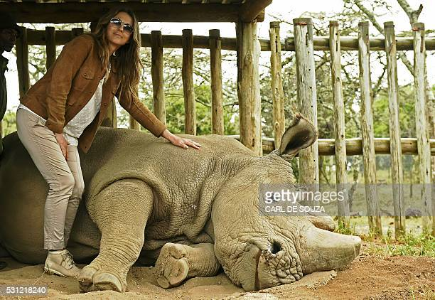 British actress Liz Hurley poses next to the last male northern white rhino sudan at Ol Pejeta Sanctuary as she takes part of the Giants Club Summit...